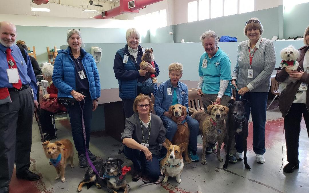Caring Canines Offer Support at AOC